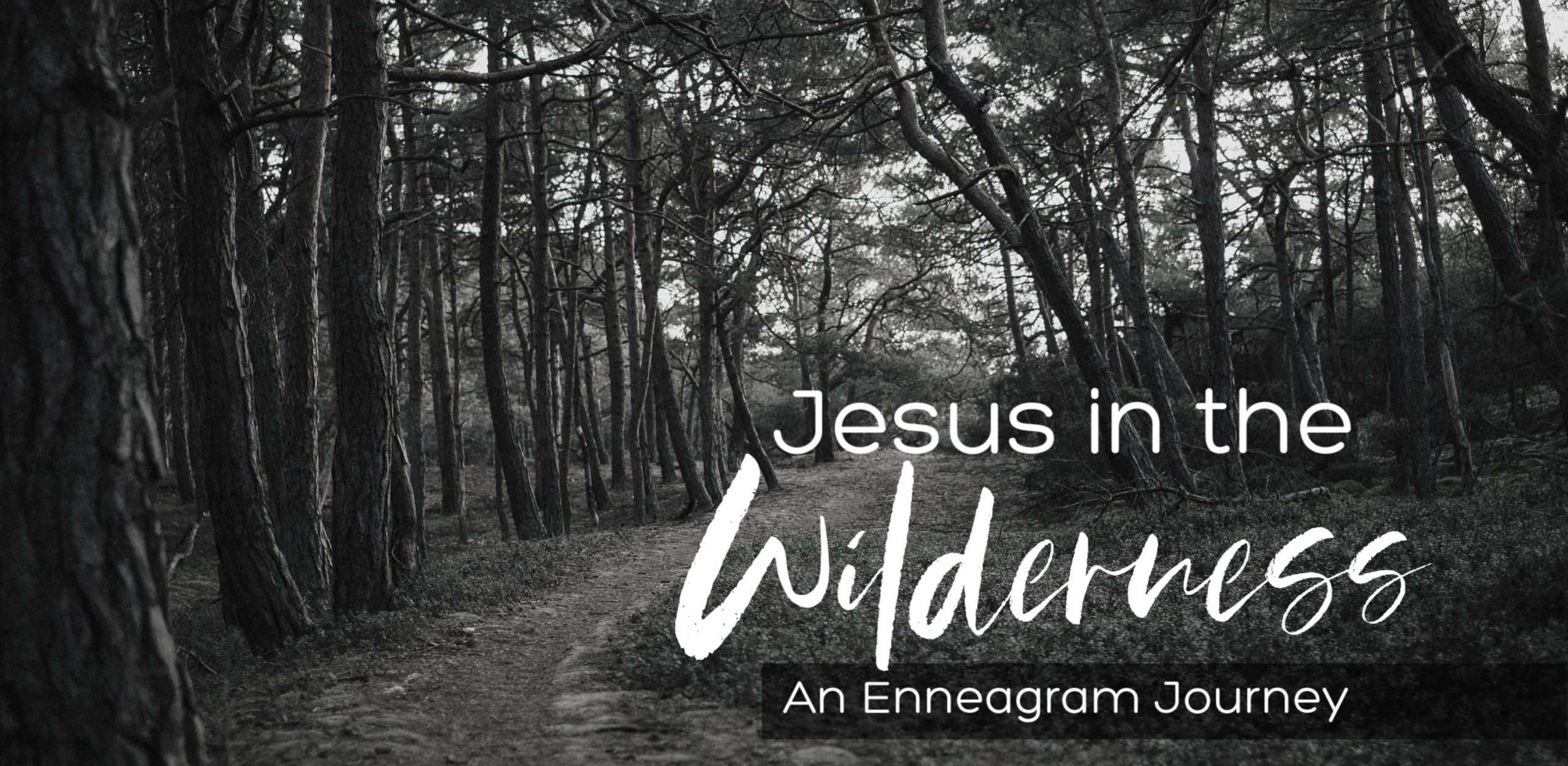 Jesus in the Wilderness