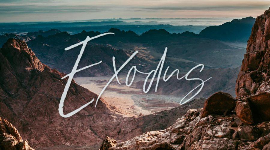 Exodus: Rescue