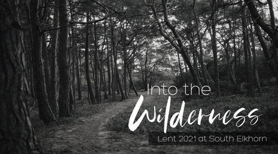 Into The Wilderness: Struggle